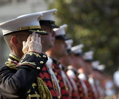 soldiers military attention salute 40546